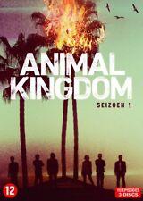 Animal Kingdom - Integrale Saison 1 (DVD)