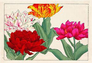 Chrysantheums A1 by Tanagami Konan High Quality Canvas Art Print