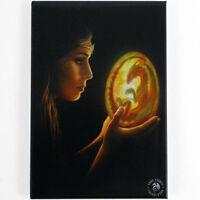 Quality Anne Stokes Fridge Magnet~Fantasy Art~Beginnings~AS41~uk seller