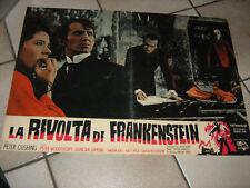LA RIVOLTA DI FRANKENSTEIN,CUSHING,FRANCIS,FOTOBUSTA 2