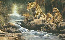 LEOPARD ART PRINT Watchful Eye by Craig Bone 24x36 Wildlife Leopards Cat Poster