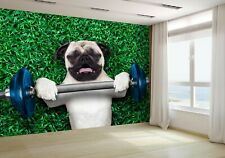 Pug Dog as Personal Trainer Wallpaper Mural Photo 31536726 budget paper
