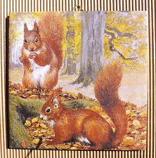 Dekofliese Geburtstag Danke Mitbringsel Geschenkidee Herbst Eichhörnchen (043)