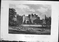 Original Old Antique Print Hawarden Castle Sheep Architecture Cassell C1882