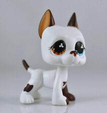 Littlest Pet DANE Blue Eye Brown Dog Child Girl Figure Toy Loose Cute LPS993
