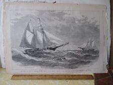 Vintage Print,OCEAN YACHT RACE,Harpers,Nov 1875