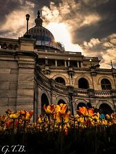 The Capitol - High Quality Canvas Print - 12 X 16
