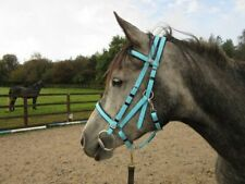Perfeq Baby/Sky Blue, 2 Part, Padded Synthetic Bridle