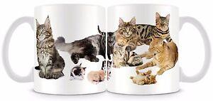 Cats with kittens Mug , 11oz cat mug