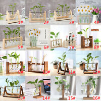Wooden Stand Hanging Glass Terrarium Container Hydroponics Pot Vase Home Decor