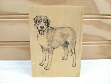 New ListingWood Greater Swiss Mountain Dog Breed Rubber Stamp Gallery Mounted Unused New