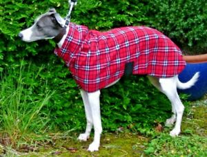 WHIPPET / LURCHER  FLEECE SNOOD DOG JUMPER ,PAJAMAS ,COAT IN SIZES 14'' TO 30''