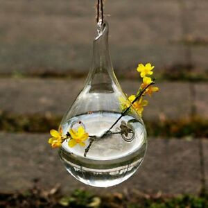 Hanging Crystal Glass Bottles Indoor And Outdoor Home Decoration Plants Storage