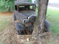 Pic #2--8x10 Photo:A 1929 Ford Sedan parked forever on this spot! Tree locked!