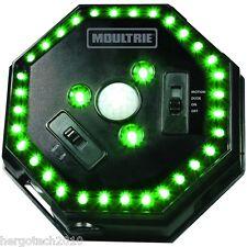 LED-Grünlicht-Ansitzlampe,Moultrie-Kirrautomat,Futterautomat,Kirrung,Nachtsicht