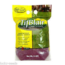 Tifblair Centipede Grass Seed - 5 Lbs. (Certified)