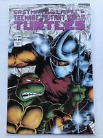 Teenage Mutant Ninja Turtles 10, Mirage 1987, Shredder Wraparound