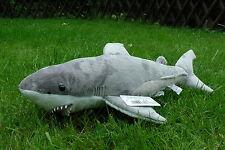 Hai 50 cm, Haifisch