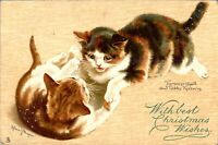 With best Christmas wishes card Tucks postcard antique Cats Tabby kittens