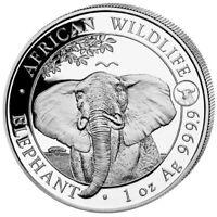 Silbermünze - Somalia Elefant, elphant Privy Ochse -  african wildlife - 2021