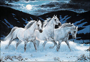 Leanin' Tree Christmas Card - White Horses In Moonlight Theme - ID#273