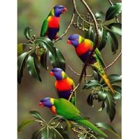 5D Full Drill Diamond Painting Parrots Embroidery Cross Stitch Kits Decor Gifts