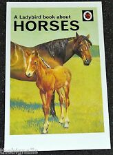 Ladybird Book Cover Postcard HORSES new