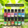 14 Type Essential Oils for Aroma Diffuser Humidifier Aromatherapy Oil Fragrance