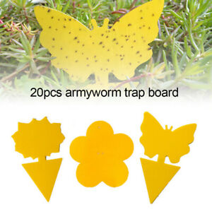 20Pcs Sticky Fly Trap Paper Yellow Traps Fruit Flies Insect Glue Catcher Best US