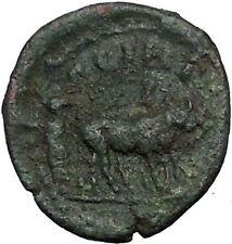 MARCUS AURELIUS Rare Possibly UNPUBLISHED Roman Coin Parium Colonist Oxen i56333