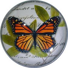 "Beautiful Crystal Dome Button Colorful Red Butterfly LgSize 1 /& 3//8/"" B 46"