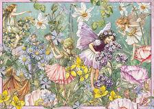 NOUVEAU! Ravensburger FLOWER FAIRIES parfum d'été 1000 Piece Jigsaw Puzzle 19749