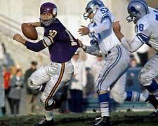 FRAN TARKENTON 8X10 PHOTO MINNESOTA VIKINGS NFL FOOTBALL PICTURE VS LIONS