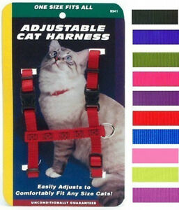 "3/8"" Nylon Adjustable Figure ""H"" Cat Harness. LOTS OF COLORS!! 10"" -18"""