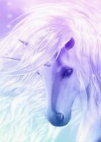 BEAUTIFUL UNICORN CHILDREN'S FANTASY HORSE 🦄 CANVAS PICTURE #23 WOODEN FRAME