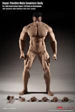 Phicen M35 Super-Flexible Male Seamless Muscular Body w/ Steel Skeleton 1/6