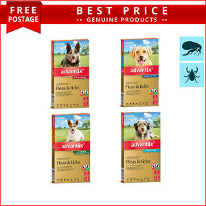 ADVANTIX Monthly Flea and Tick Treatment for All Sizes Dogs 3 Doses AU Seller
