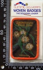 VINTAGE TASMANIAN BLUE GUM EMBROIDERED SOUVENIR PATCH WOVEN CLOTH SEW-ON BADGE