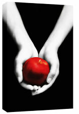 LARGE MODERN CANVAS PICTURE RED & BLACK APPLE IN HANDS