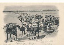 AK aus Biskra, Algerien, Kamel-Karawanne  (R20)