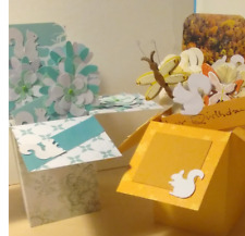 Birthday Thinking of You Exploding Box Cards -white squirrels - Free ship US
