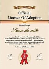 Animal Adoption Certificate  A4 Quality 130gms Matt photo paper ( Novelty )