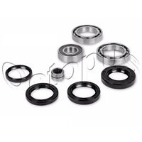 Arctic Cat 250 4x4 ATV Bearing & Seal Kit for Front Differential 2002-2003