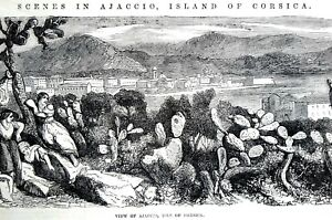 Ajaccio Island of CORSICA ITALY 1856  CITY CACTUS PEOPLE Antique Matted Print