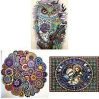 5D DIY Special-shaped Diamond Painting Cross Stitch Embroidery Mosaic Kit TN2F