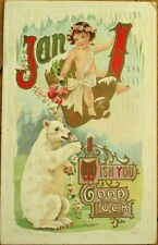 Polar Bear - 1910 New Year Postcard - Embossed, Color Litho