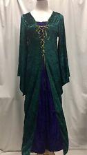 Lady Juliet Renaissance Princess Velvet Adult Halloween Costume PREOWNED Sz S/M