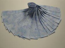 """Jelly Roll-Sky Blue Cosmos Col. By Wilmington Prints-20-2-1/2"""" x 43"""" Strips"""