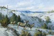 Quiet Canyon  by George Browne  Giclee Canvas Print Repro