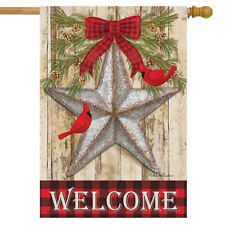 Festive Barnstar Winter House Flag Primitive Welcome Cardinals 28